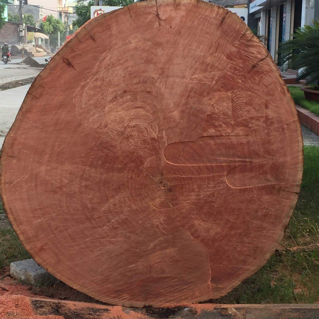 Hình ảnh gỗ Đinh Hương